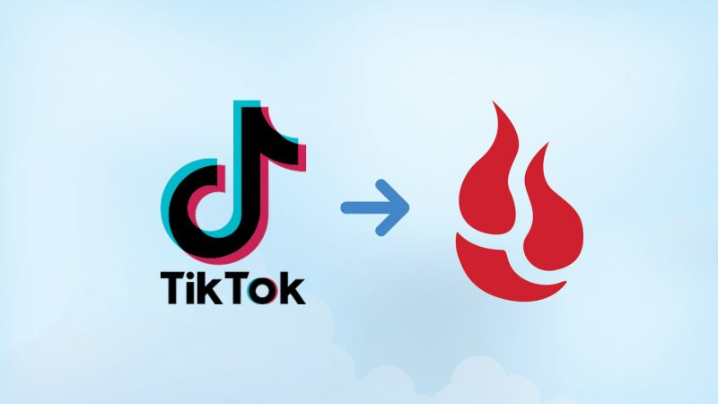 Tiktok's Preferences: What You Must Know